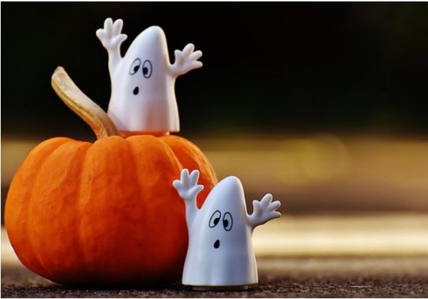 Happy Halloween Adapted Book
